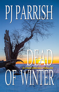 Dead of Winter ebook